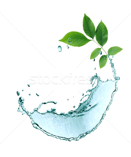 Water Splash And Leaves Stock photo © cosma