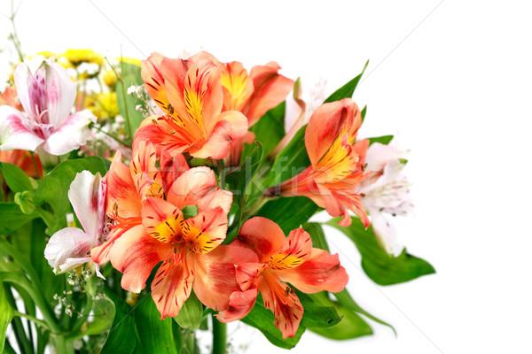 Bunch Of Flowers Stock photo © cosma