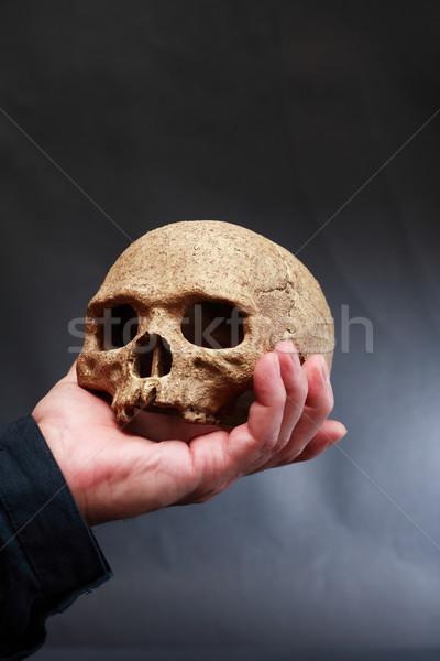 Kéz koponya tart emberi sötét Stock fotó © cosma