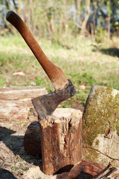 薪 スタック 斧 緑 森林 背景 ストックフォト © cosma