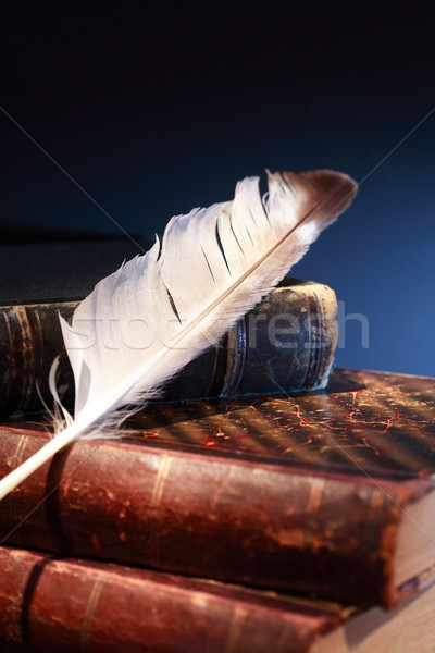 Quill On Books Stock photo © cosma