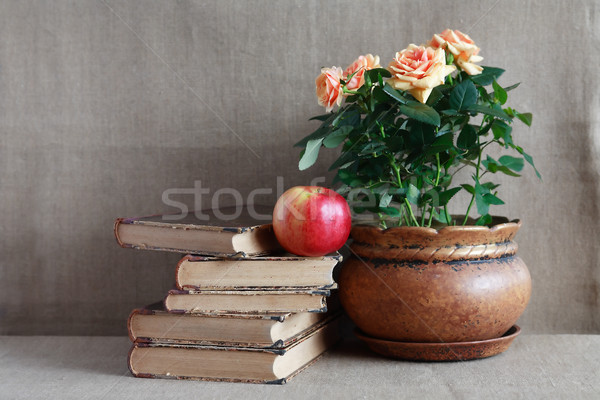 Old Books And Flowers Stock photo © cosma