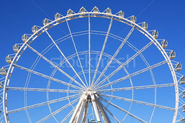 Ferris Wheel Stock photo © cosma