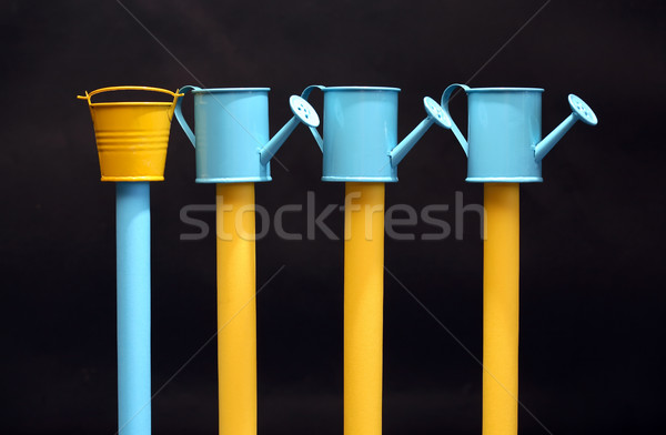 Watering Cans And Bucket Stock photo © cosma