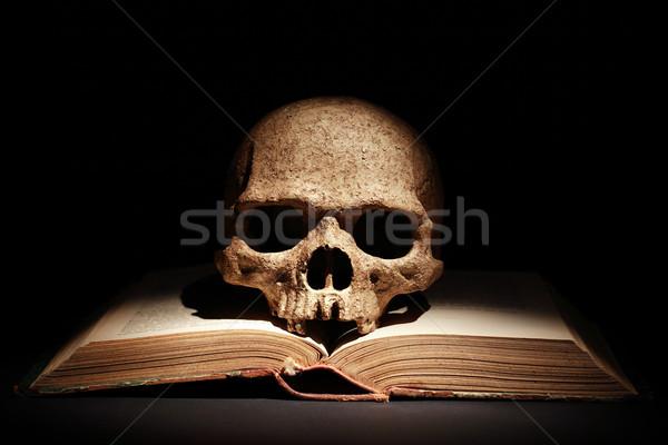 Czaszki książki jeden ludzi starych otwarta księga Zdjęcia stock © cosma