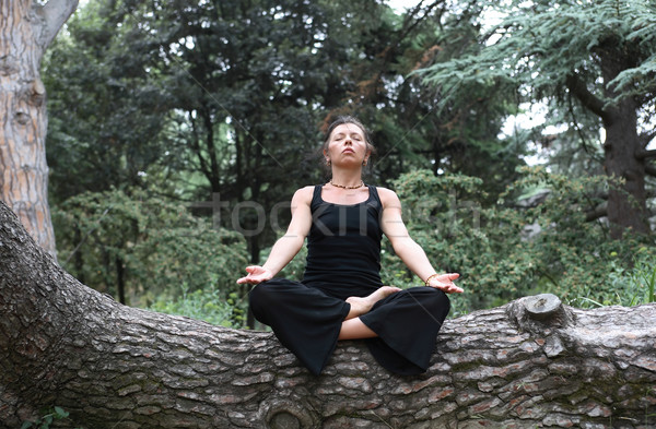 Meditation In Forest Stock photo © cosma