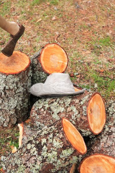 Yakacak odun yeşil orman çiftlik Stok fotoğraf © cosma