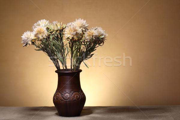 花 花瓶 いい ブラウン 壁 ストックフォト © cosma