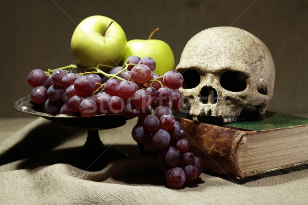 Memento morte humanismo crânio velho livros Foto stock © cosma