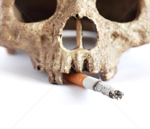 Mort fumeur humaine crâne cigarette blanche Photo stock © cosma