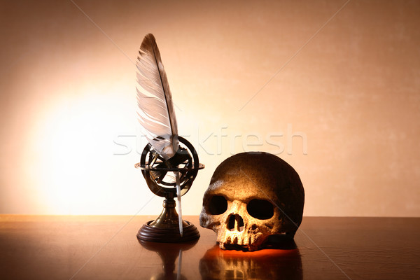 Skull And Quill Pen Stock photo © cosma