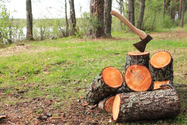 Bois de chauffage ax vert forêt fond Photo stock © cosma