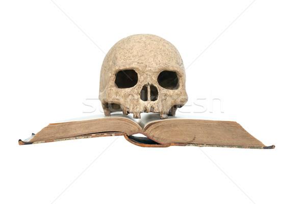 Skull On Book Stock photo © cosma
