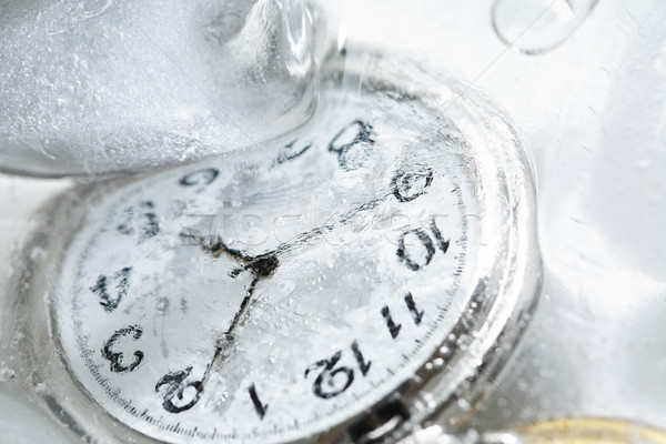 Watch In Ice Stock photo © cosma