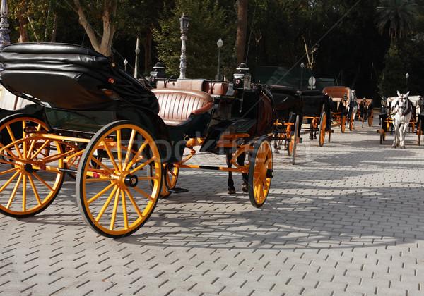 Fuvar parkolás kevés üres lovak park Stock fotó © cosma