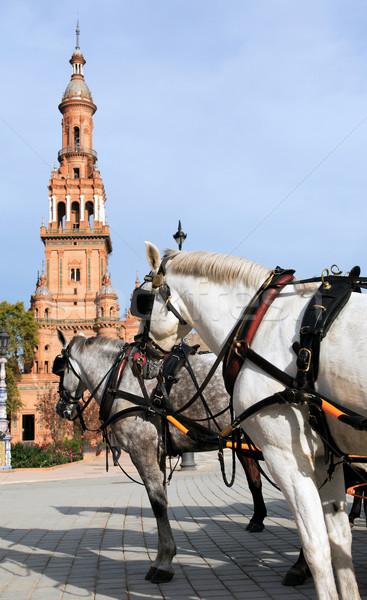 Plaza de Espana Stock photo © cosma