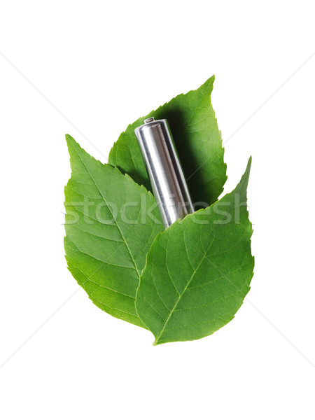 Battery On Leaves Stock photo © cosma