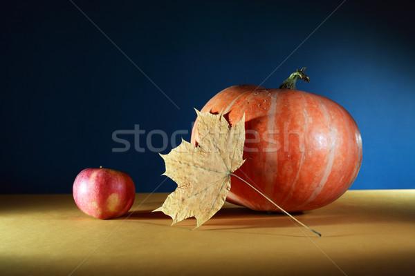Autumn Still Life Stock photo © cosma