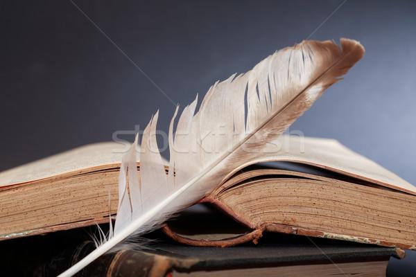 Irodalom csendélet toll öreg könyvek művészet Stock fotó © cosma