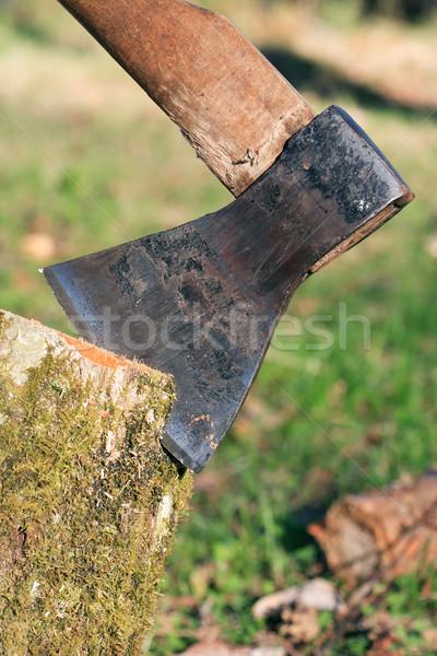 Axe In Log Stock photo © cosma