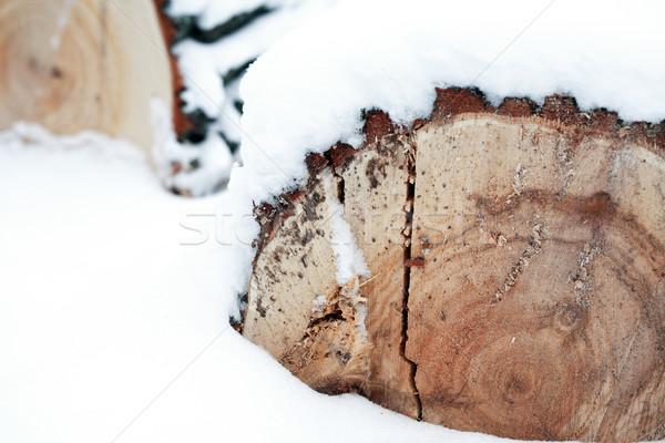 Kereste kar güzel dizayn arka plan Stok fotoğraf © cosma