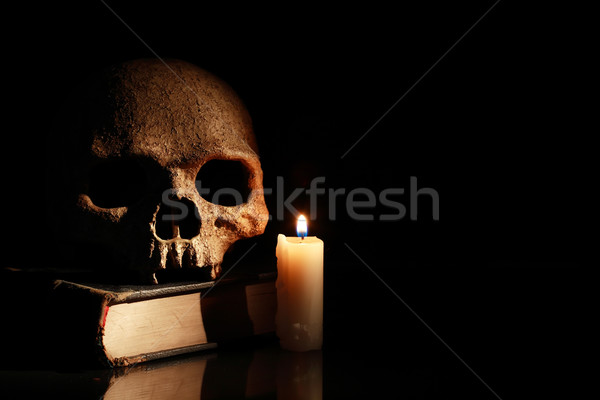 Skull On Book Stock photo © cosma