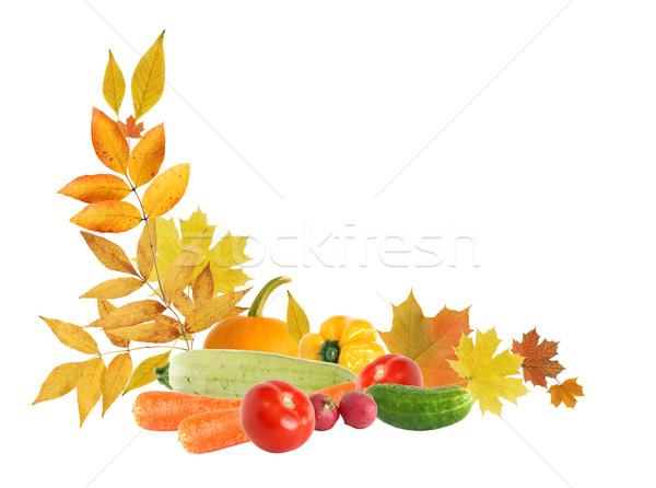 Harvest Frame Stock photo © cosma