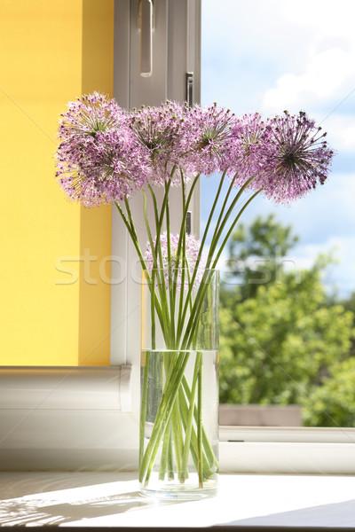 Flowers On Window-Sill Stock photo © cosma