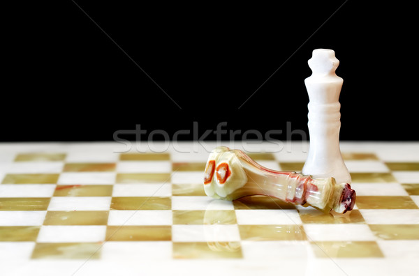 Chess Kings On Board Stock photo © cosma