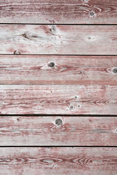Nice Timbered Background Stock photo © cosma