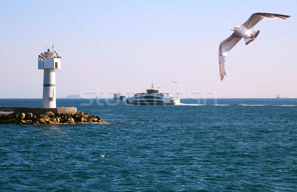 Lighthouse In Bosporus Stock photo © cosma