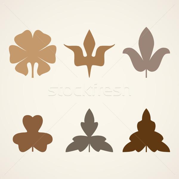 Decorativo rosolare foglie pattern set isolato Foto d'archivio © cosveta