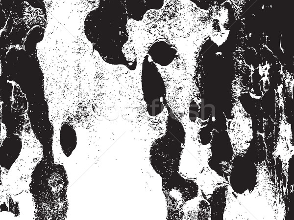 Bark close up texture vector illustration. Black and white color Stock photo © cosveta