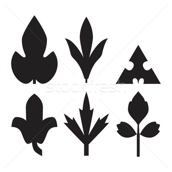 Decorative black leaves pattern set isolated on white vector. Va Stock photo © cosveta