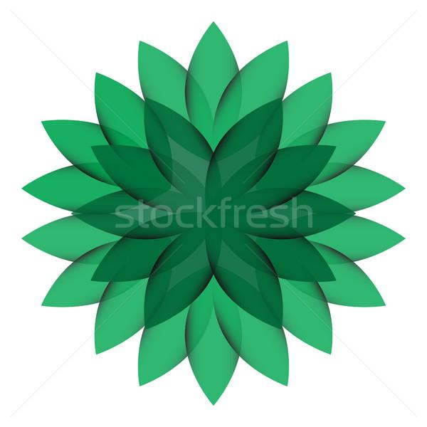 Zielone koła kwiat przezroczysty odizolowany wiosną Zdjęcia stock © cosveta