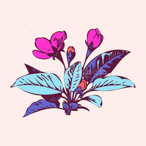 Cereza flores sakura boda naturaleza Foto stock © cosveta