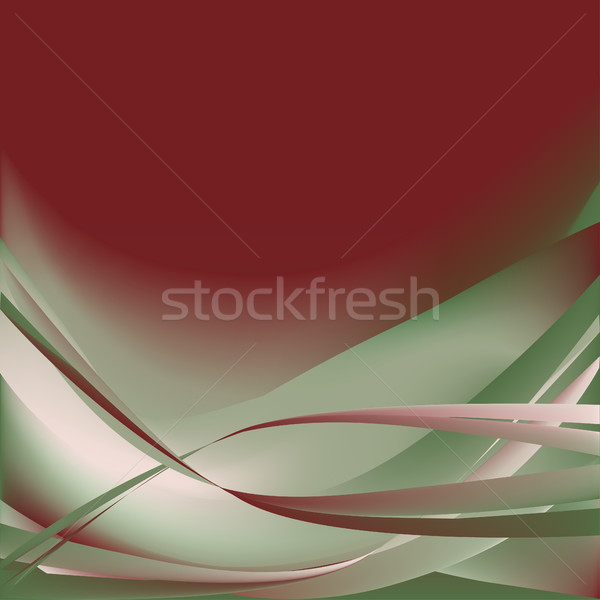 Colorful flower isolated abstract background  Stock photo © cosveta