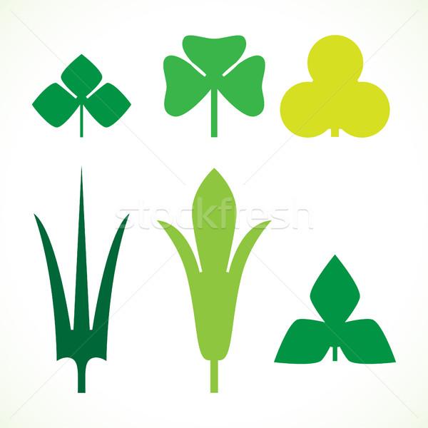Decorativo foglie verdi pattern set isolato bianco Foto d'archivio © cosveta