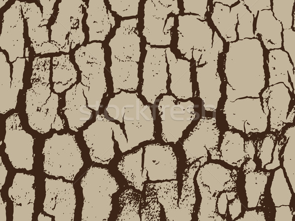 Bark close up texture vector illustration Stock photo © cosveta