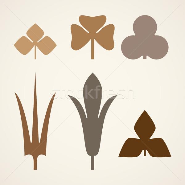Dekoracyjny brązowy pozostawia wzór zestaw odizolowany Zdjęcia stock © cosveta