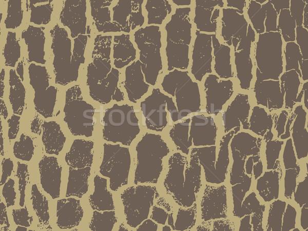 Bark close up texture vector illustration. Beige colors Stock photo © cosveta