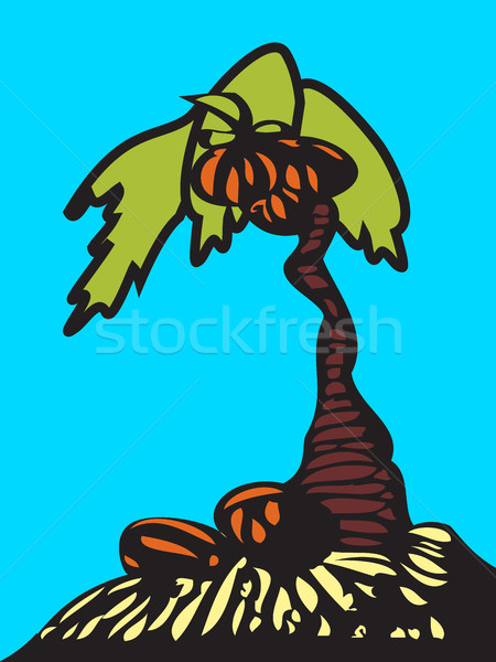 Palmboom kokosnoten geïsoleerd Blauw licht grond Stockfoto © cosveta
