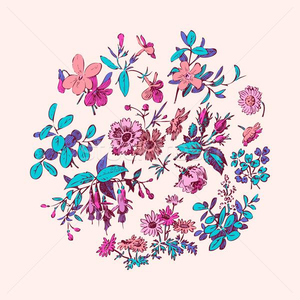 Prado flor folha coroa isolado rosa Foto stock © cosveta