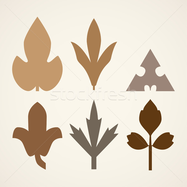 Сток-фото: декоративный · коричневый · листьев · шаблон · набор · изолированный