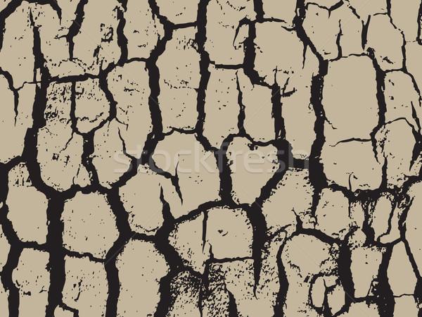 樹皮 テクスチャ インテリア パターン ボード ストックフォト © cosveta