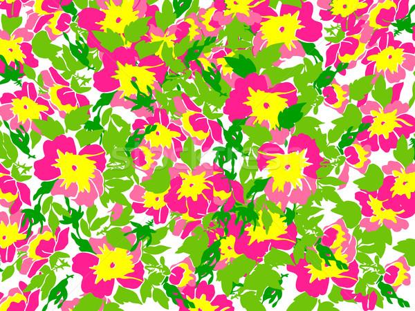 Spring summer Flowers in vintage style. Seasons Floral pattern Stock photo © cosveta