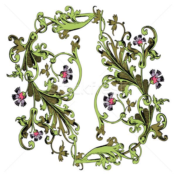 Dessinés à la main illustration brindille fleurs laisse baroque Photo stock © cosveta