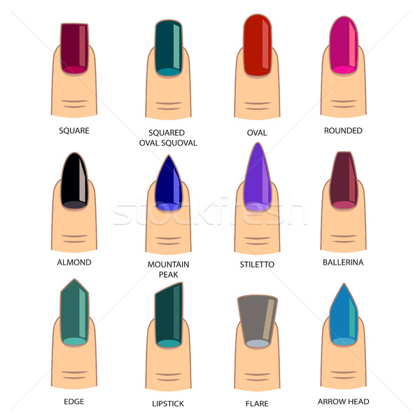 Set of different shapes of nails on white. Nail shape icons. Man Stock photo © cosveta