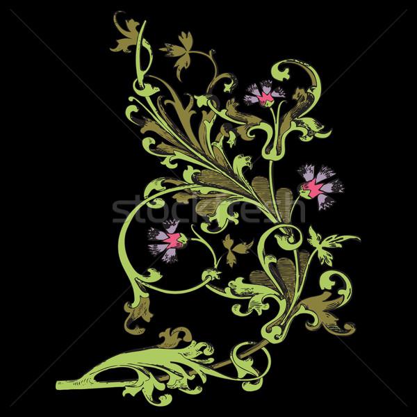 手描き 実例 小枝 花 葉 バロック ストックフォト © cosveta