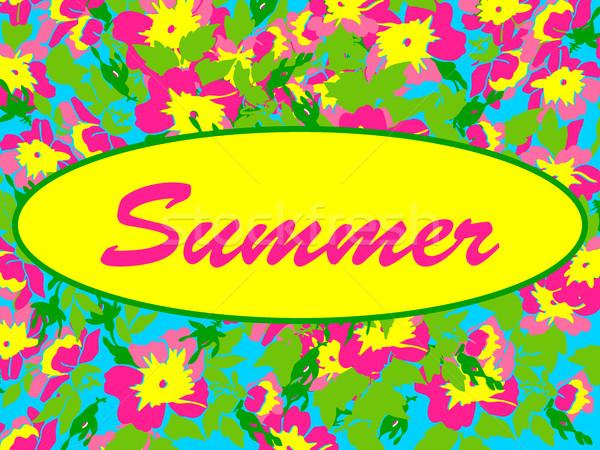 Vektor keret izolált nyári virágok klasszikus stílus Stock fotó © cosveta